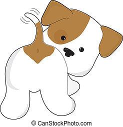 Hübscher Hundeblick