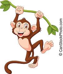 Hübsches Affentier hängt.