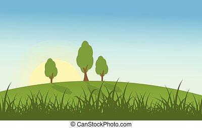 Hügel mit Gras und Baumlandschaft.