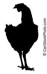 Hühnersilhouette.