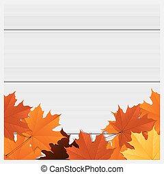 Hallo Herbst Hintergrund mit bunten Blättern auf Holzbrett 3.
