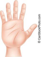 hand, abbildung, menschliche