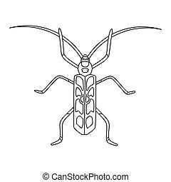 hand-drawn, käfer, seite, gekritzel, children., anti-stress, abbildung, vektor, barbel, book., linear, beetle-insect, buch, färbung, erwachsene, alpin
