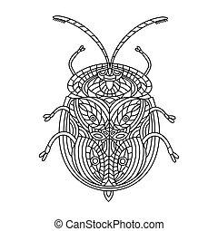 hand-drawn, turtle, käfer, anti-stress, illustration., children., tortuga, vektor, doodles., book., goldenes, linear, buch, färbung, erwachsene