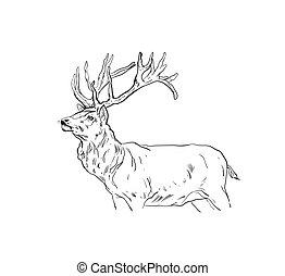 Hand gezeichneter Vektor abstrakter Spaß Cartoon Merry Christmas time Zeichnung Illustration Design Element mit scandinavian Hirsch Sketch isoliert auf weißem Hintergrund.