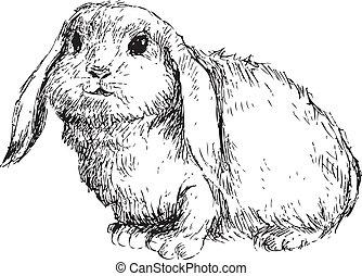 Hand gezeichnetes Kaninchen.