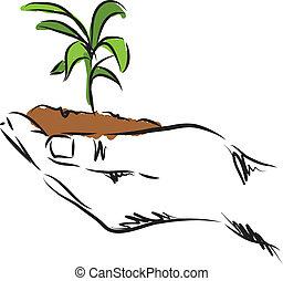 Hand-hängende Pflanzen-Illustration