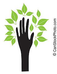 Hand mit Blättern