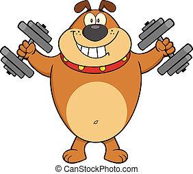 Happy Brown Bulldog mit Dumpfbacken.