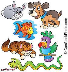 Happy Pets Sammlung 1