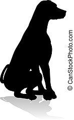 haustier, tier, silhouette, hund