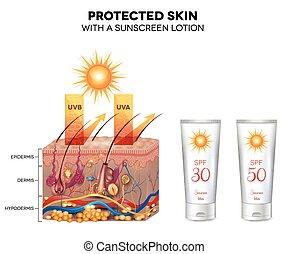 haut, geschützt, lotion, sonnenschutzcreme