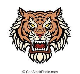head., tiger