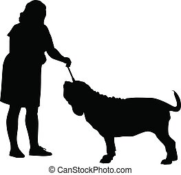 hehler, dogge, hund, neapolitan, ausstellung