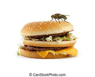Heimfliege sitzt auf einem Hamburger