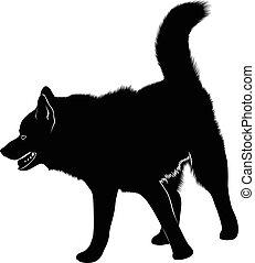 heiser, sibirisch, laika., hund