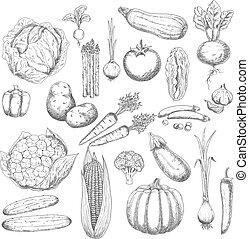 Herbst-Ernte-Symbol mit frischem Gemüse.