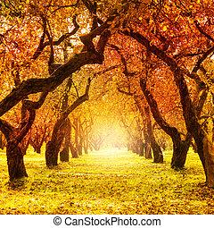 Herbst. Fallen. Herbstpark