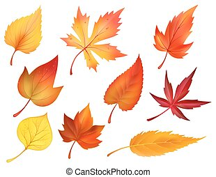 Herbst-Folien des fallenden Blätter Vektor-Icons