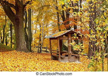 Herbst im Park mit gelben Blättern am Boden