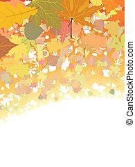 Herbst verlässt den Hintergrund.