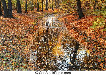 Herbstbäume reflektieren im Fluss.