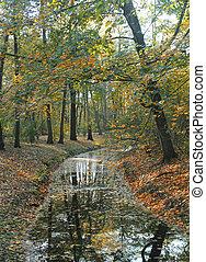 Herbstbäume spiegeln sich im Fluss wider