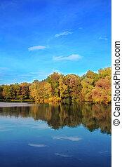 Herbstbäume spiegeln sich im See wider