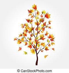 Herbstbaum. Maple