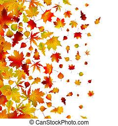 Herbstblätter, Hintergrund. EPS 8