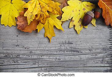 Herbsthintergrund mit Ahorn und Eichenblättern und Eicheln