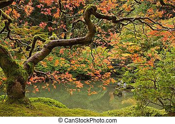 Herbstsaison im japanischen Garten 2