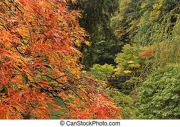 Herbstsaison im japanischen Garten