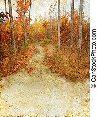 Herbstwaldspur auf Grunge-Hintergrund