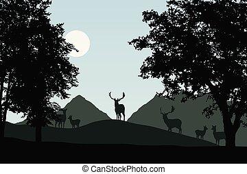 Herde des fallenden Hirsches steht unter dezidigen Bäumen, Vektor, mit Himmel mit Sonne und Raum für Ihren Text.
