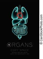 herz, begriff, organ, ikone, raum, farbe, text, mann, idee, abbildung, freigestellt, dunkel, satz, hintergrund, infektion, röntgenaufnahme, kopie, organe, rotes , glühen