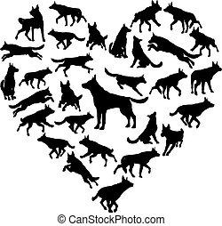 herz, begriff, shepard, deutsch, hund, elsässisch