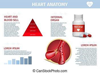 Herz, Gefäßtherapie, Gesundheits-Reality-Banner