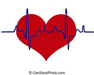 Herz und Herzschlag.
