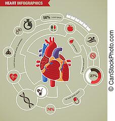 herzleiden, angriff, infographic, menschliche , gesundheit