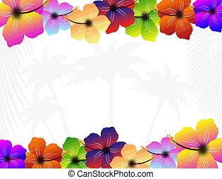 Hibiscus Blumen