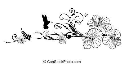 Hibiscus und Kolibri