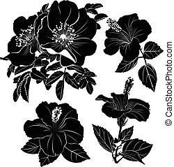 hibiskus, karkade., flower., dog-rose, blumen, hibiscus.