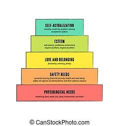 hierarchie, maslow's