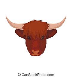 Highland Rinderkopf Ikone im Cartoon Stil isoliert auf weißem Hintergrund. Schottlands Symbol-Aktivierung.
