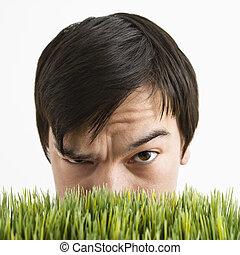 hinten, verdächtig, grass., mann