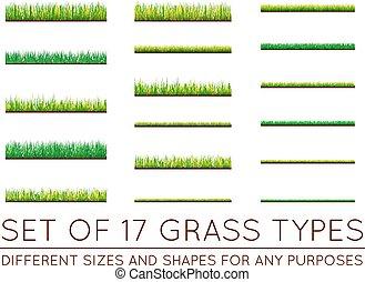 Hintergründe von grünem Gras, isoliert auf weißem Hintergrund, Vektorgrafik.