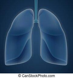 hintergrund., blaues, menschliche , lungen