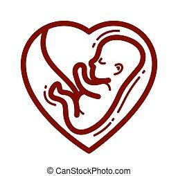 hintergrund., fötus, ungeboren, mutterleib, vektor, weißes, kind, linear, menschliche , freigestellt, embryo, ikone