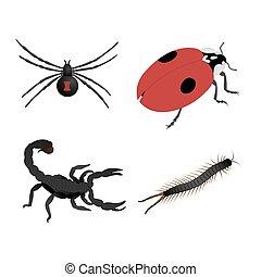 hintergrund., insekten, weißes, freigestellt, satz